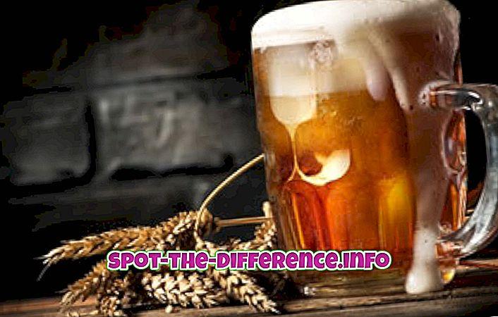 razlika između: Razlika između piva i jabukovače