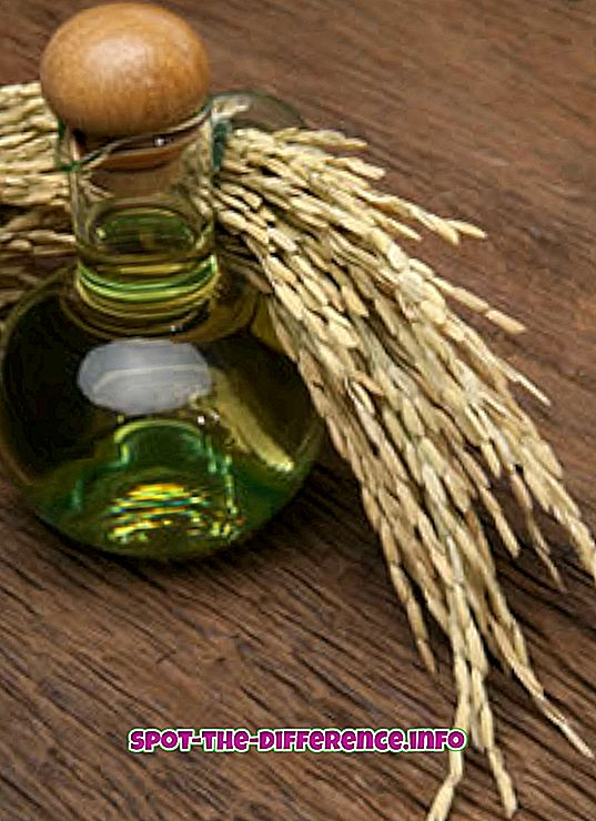 Verschil tussen Rice Bran Oil en Soybean Oil