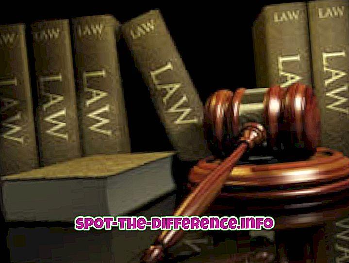 a különbség köztük: A törvény és a szabály közötti különbség
