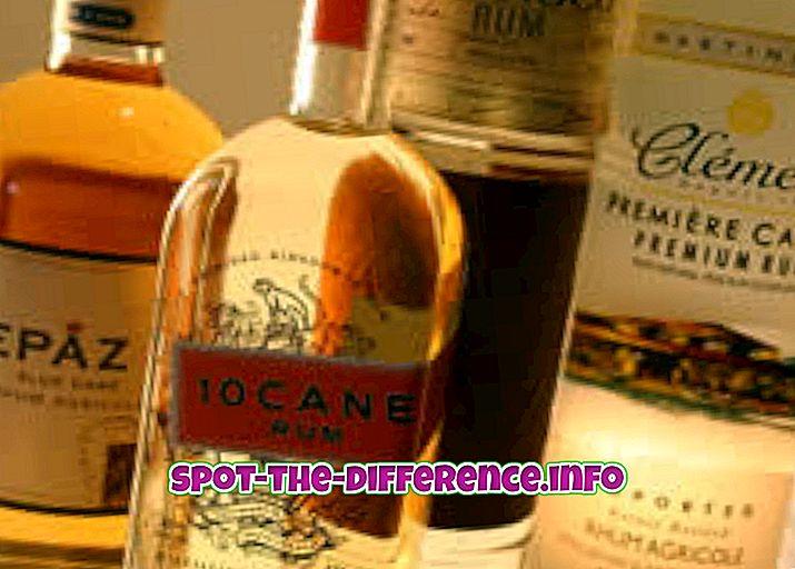 Rozdíl mezi Rum a Gin