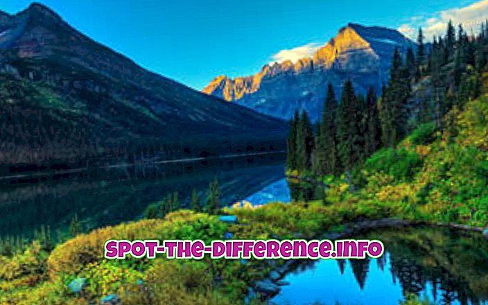 różnica pomiędzy: Różnica między krajobrazem a portretem