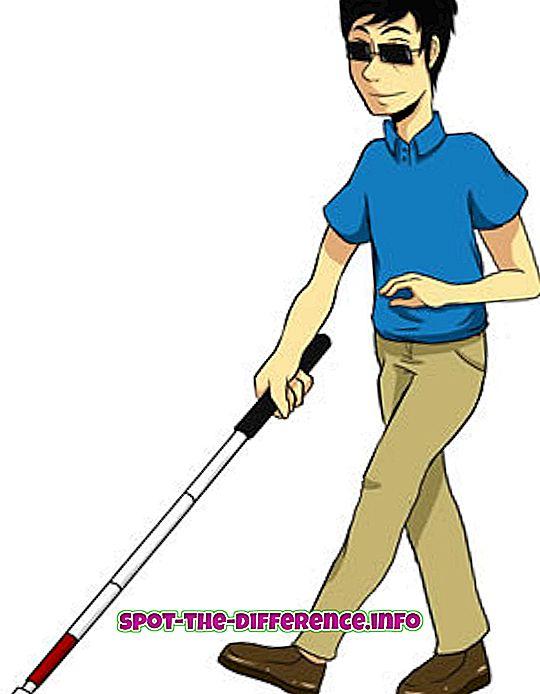 Diferença entre cegos e deficientes visuais