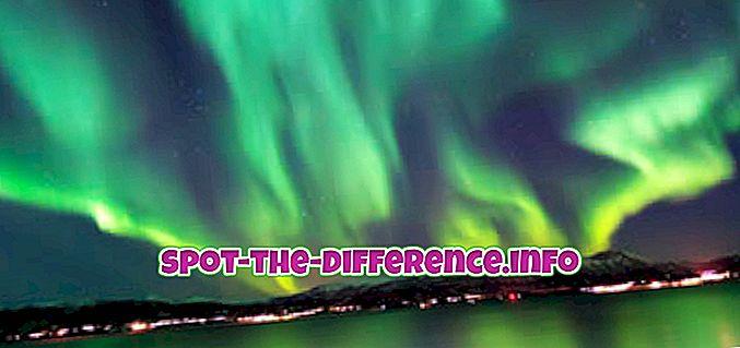 rozdiel medzi: Rozdiel medzi severnými svetlami a južnými svetlami