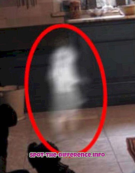 різниця між: Різниця між привидами і духами