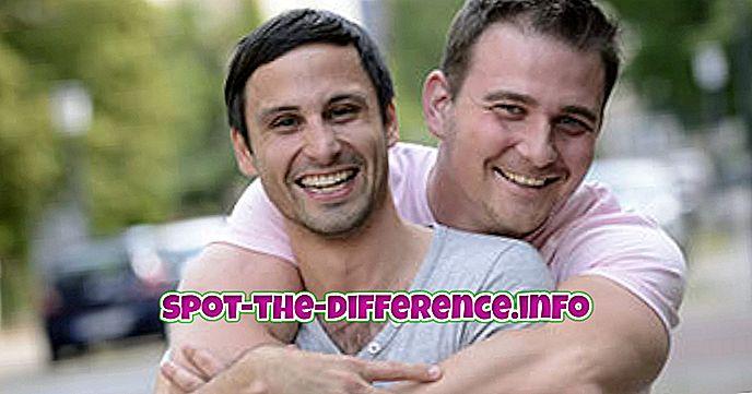 atšķirība starp: Starpība starp geju un lesbietēm