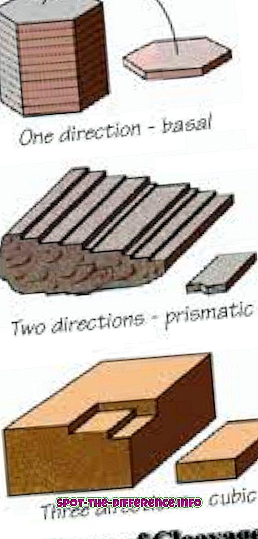 Perbedaan antara Pembelahan dan Fraktur