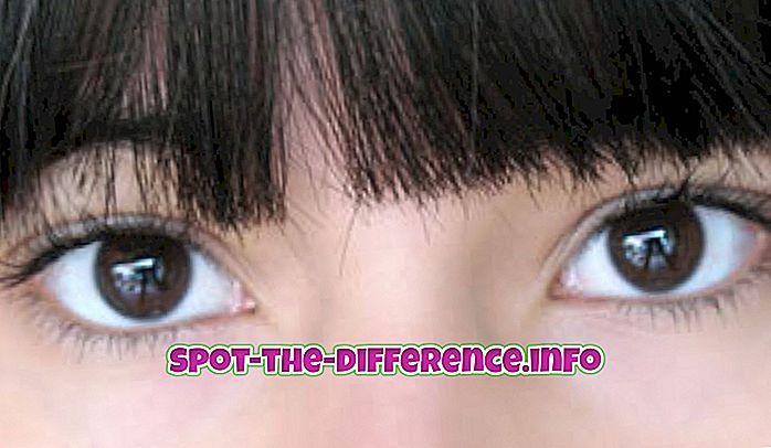 comparações populares: Diferença entre os olhos japoneses e chineses