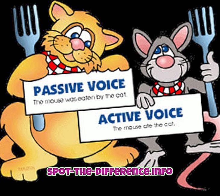 Разлика между пасивен глас и активен глас