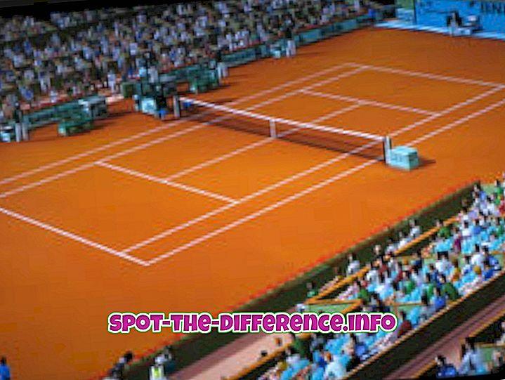 Rozdiel medzi Clay Court a Grass Court