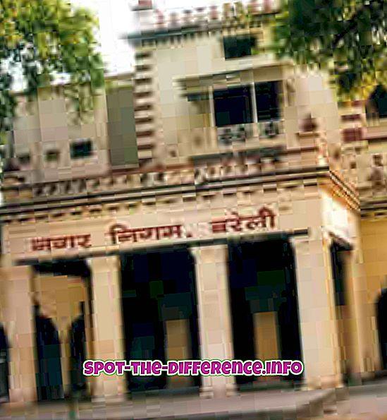 ความแตกต่างระหว่าง Nagar Nigam และ Nagar Palika