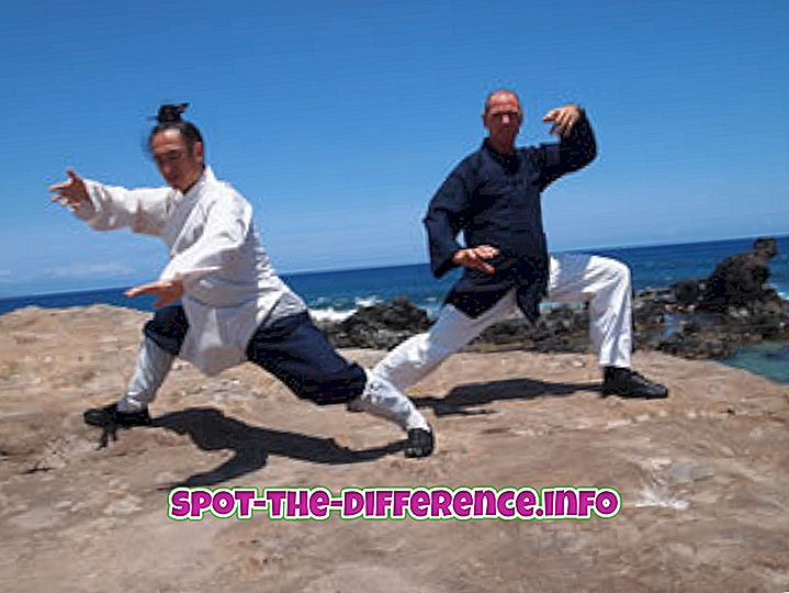 Differenza tra Tai Chi e Karate
