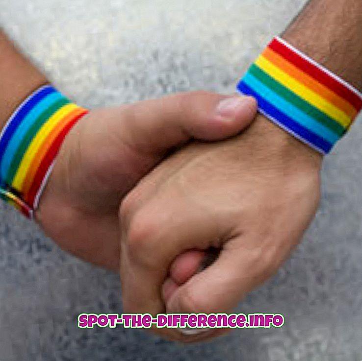 populaire vergelijkingen: Verschil tussen homoseksueel en biseksueel