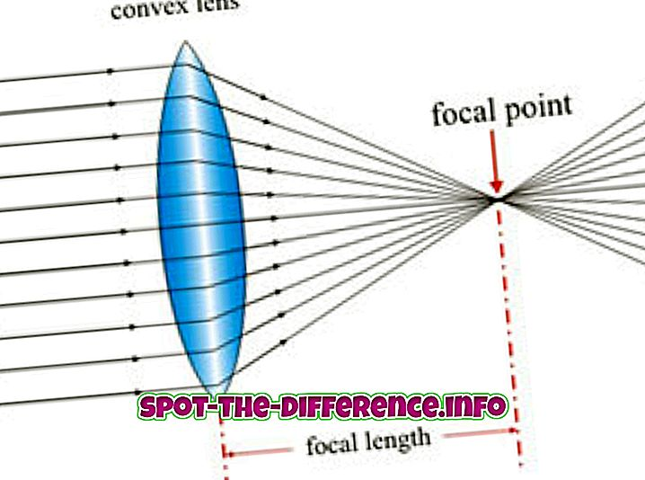 beliebte Vergleiche: Unterschied zwischen konvexer und konkaver Linse