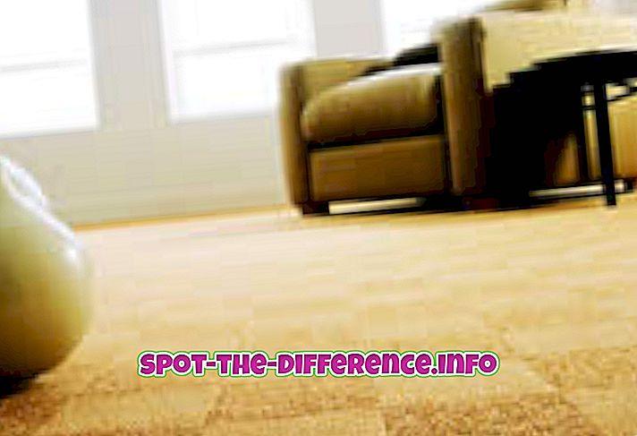 Forskel mellem tæppe og tæppe