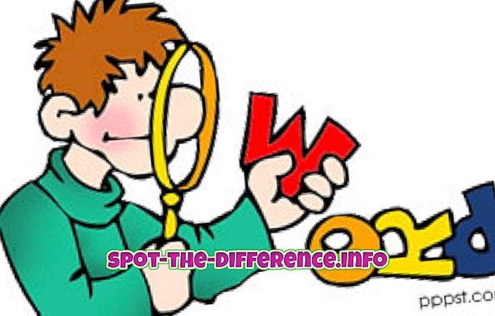 대중적 비교: 명백하게, 아마도, 그리고 아마 사이의 차이