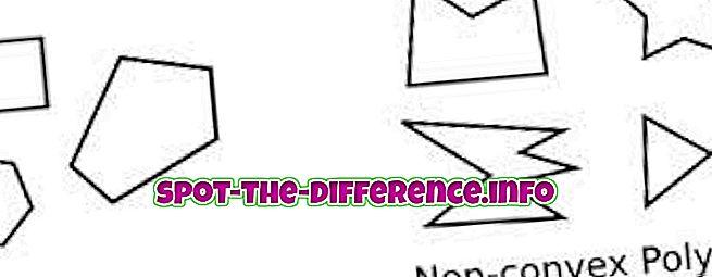 perbandingan populer: Perbedaan antara Cembung dan Non-cembung