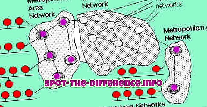 การเปรียบเทียบความนิยม: ความแตกต่างระหว่าง LAN และ MAN