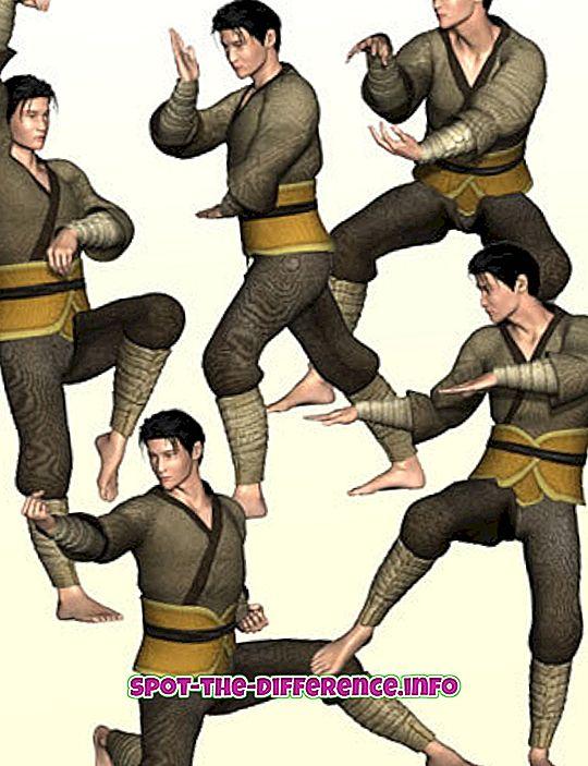 Starpība starp Kung Fu un Martial Arts