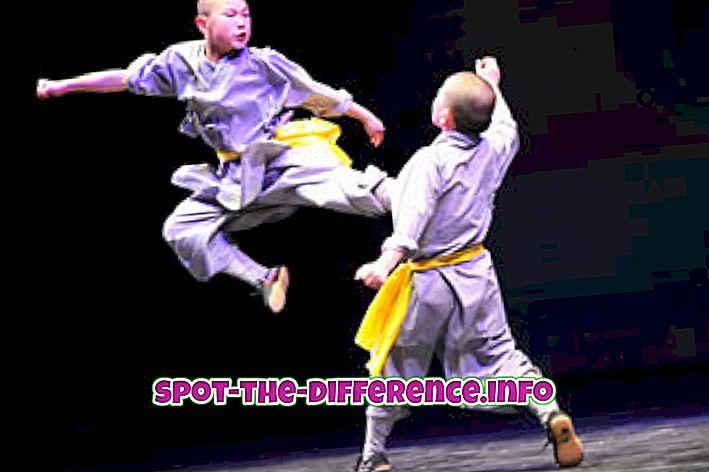 beliebte Vergleiche: Unterschied zwischen Kung Fu und Taekwondo