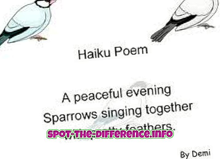 Haiku ve Tanka arasındaki fark