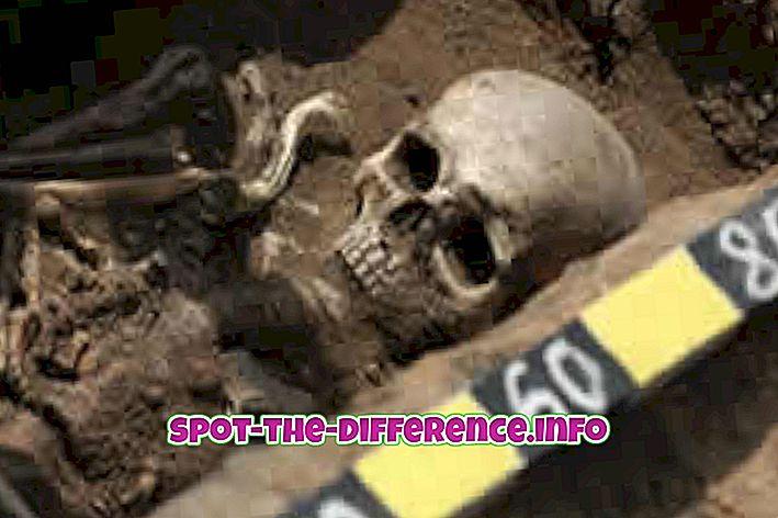 Différence entre archéologie et généalogie