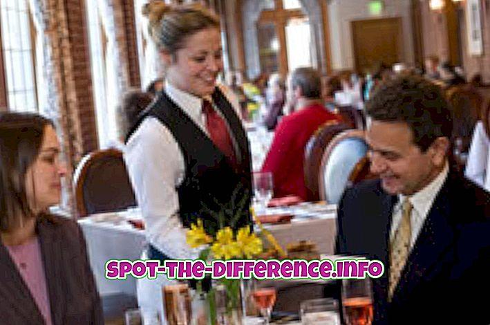 populaarsed võrdlused: Erinevus serveri ja hosti vahel restoranis