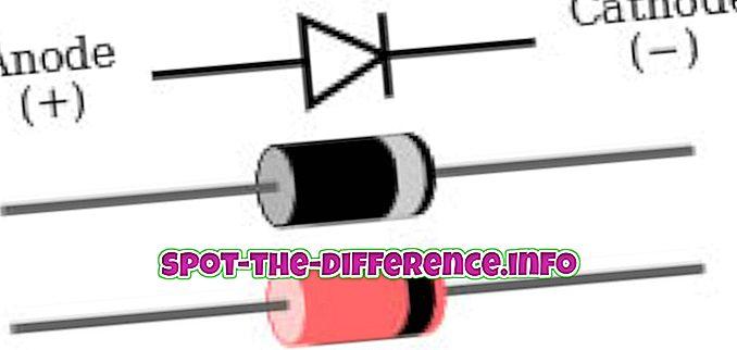 Rozdiel medzi diódou a zenerovou diódou