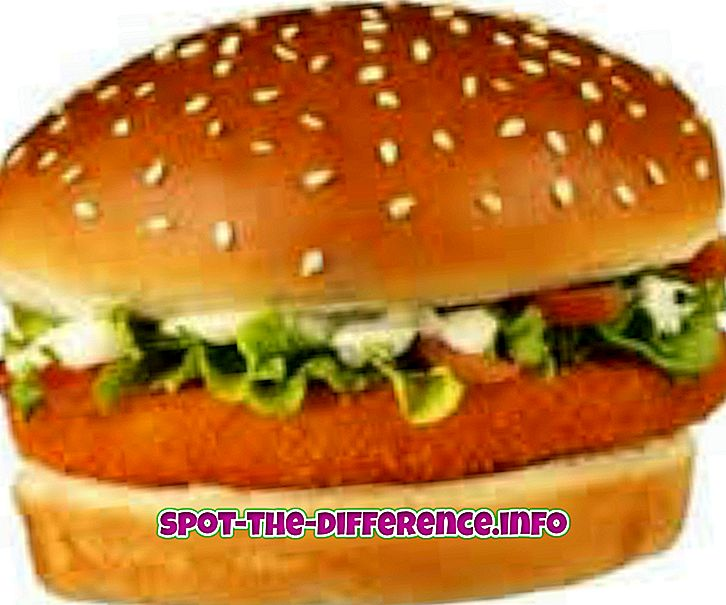 Differenza tra Burger e Sandwich