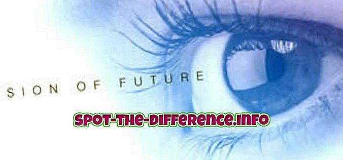 Vision ja tavoitteen välinen ero