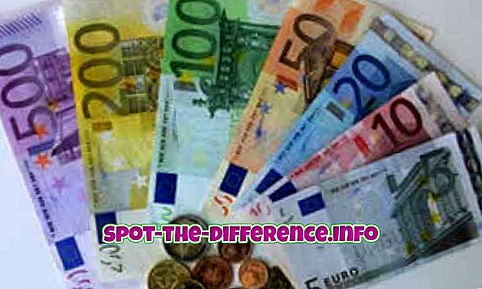 popularne porównania: Różnica między euro a dolarem