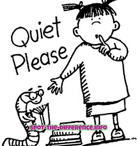 popularne porównania: Różnica między cichym a cichym