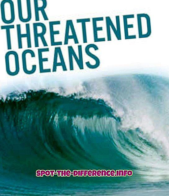 Unterschied zwischen gefährdet und bedroht