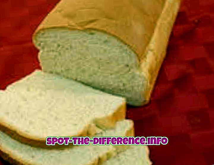 populære sammenligninger: Forskel mellem hvidt brød og hvedebrød