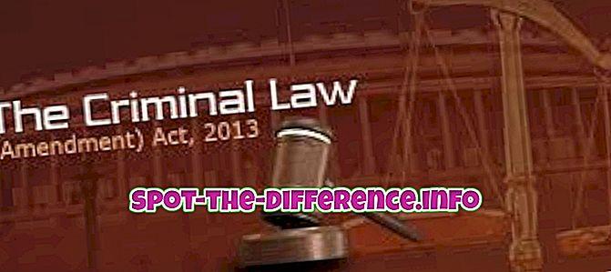 populära jämförelser: Skillnad mellan lag och regel
