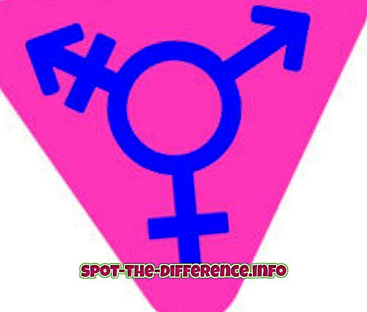 人気の比較: トランスジェンダーとヒジュラの違い