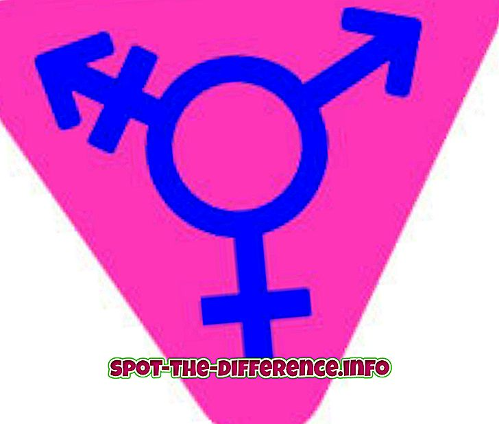 Różnica między Transgenderami a Hijra
