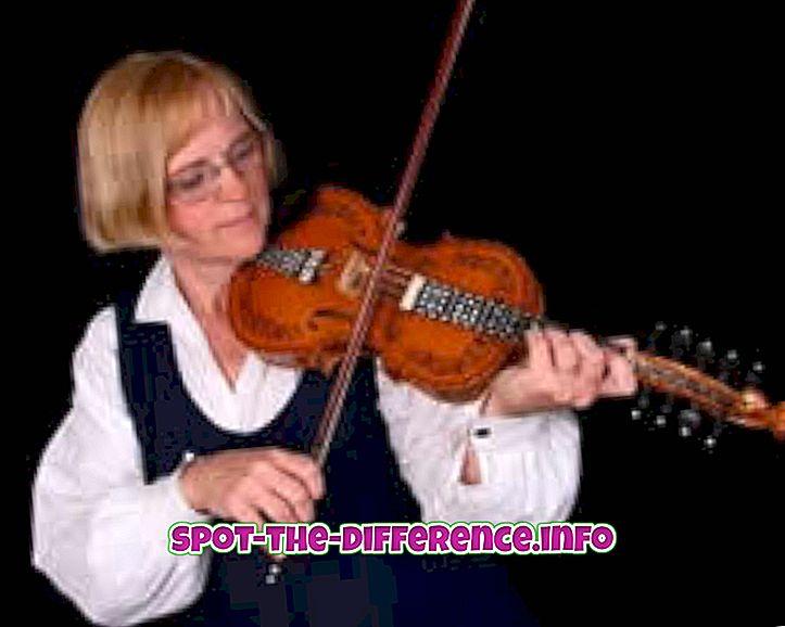 популарна поређења: Разлика између виолина и виолина