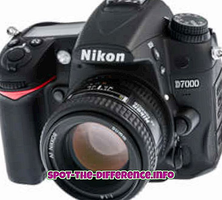 การเปรียบเทียบความนิยม: ความแตกต่างระหว่างกล้อง SLR และกล้องดิจิตอล