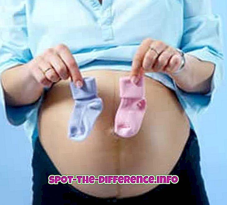 so sánh phổ biến: Sự khác biệt giữa mang thai với bé trai và bé gái