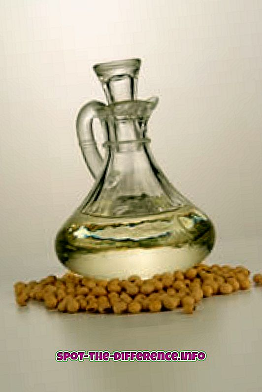Unterschied zwischen Sojaöl und Olivenöl