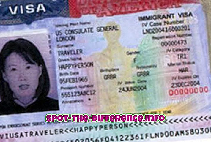 Starpība starp imigrantu un bēgli