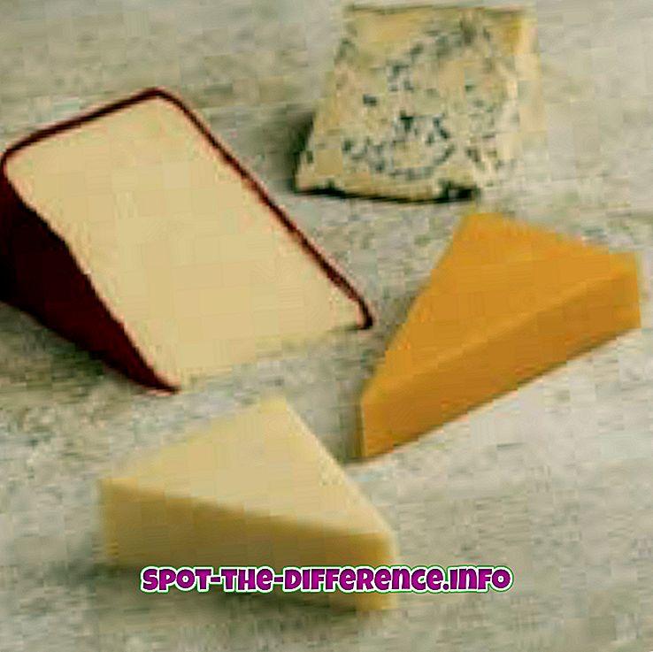 so sánh phổ biến: Sự khác biệt giữa phô mai và bơ