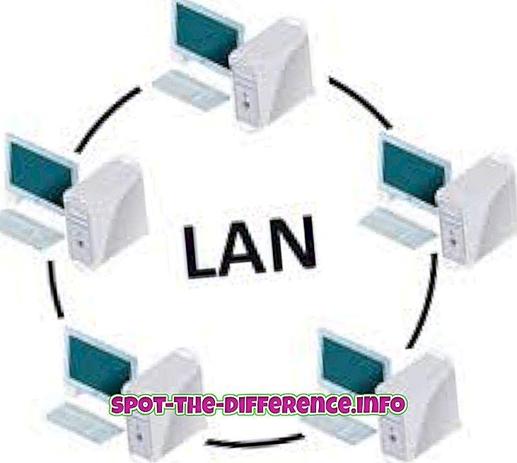 perbandingan populer: Perbedaan antara LAN dan Wi-Fi