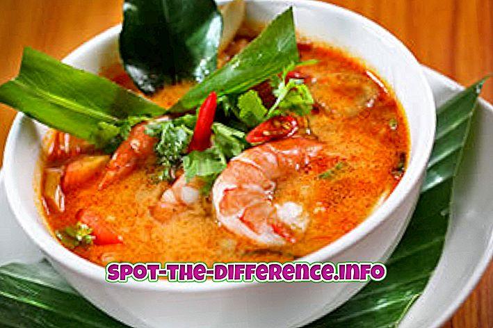 Rozdíl mezi thajskými a čínskými potravinami