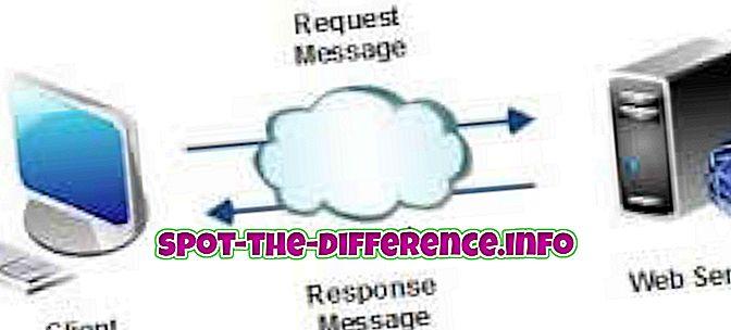 Разлика између Веб услуга и ВЦФ-а