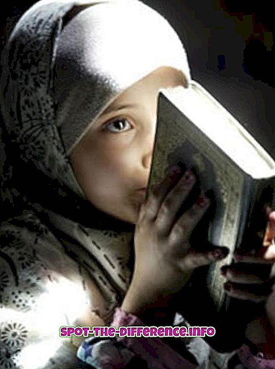 beliebte Vergleiche: Unterschied zwischen Koran und Bibel