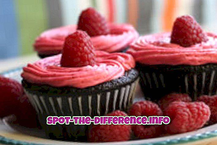 Verschil tussen Cupcake en Cake