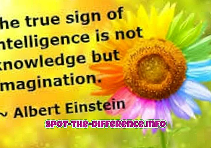 Forskjell mellom intelligens og kunstig intelligens
