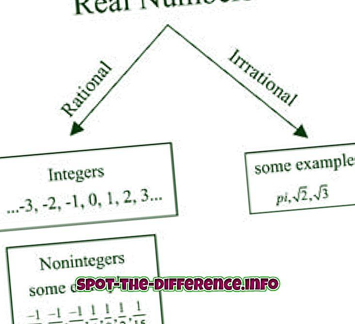 populære sammenligninger: Forskjell mellom Real Number og Complex Number