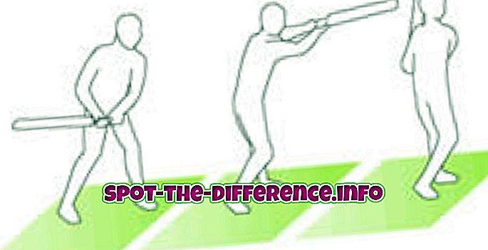 populárne porovnania: Rozdiel medzi Hook Shot a Pull Shot v krikete